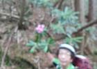 img_20130526_115505612